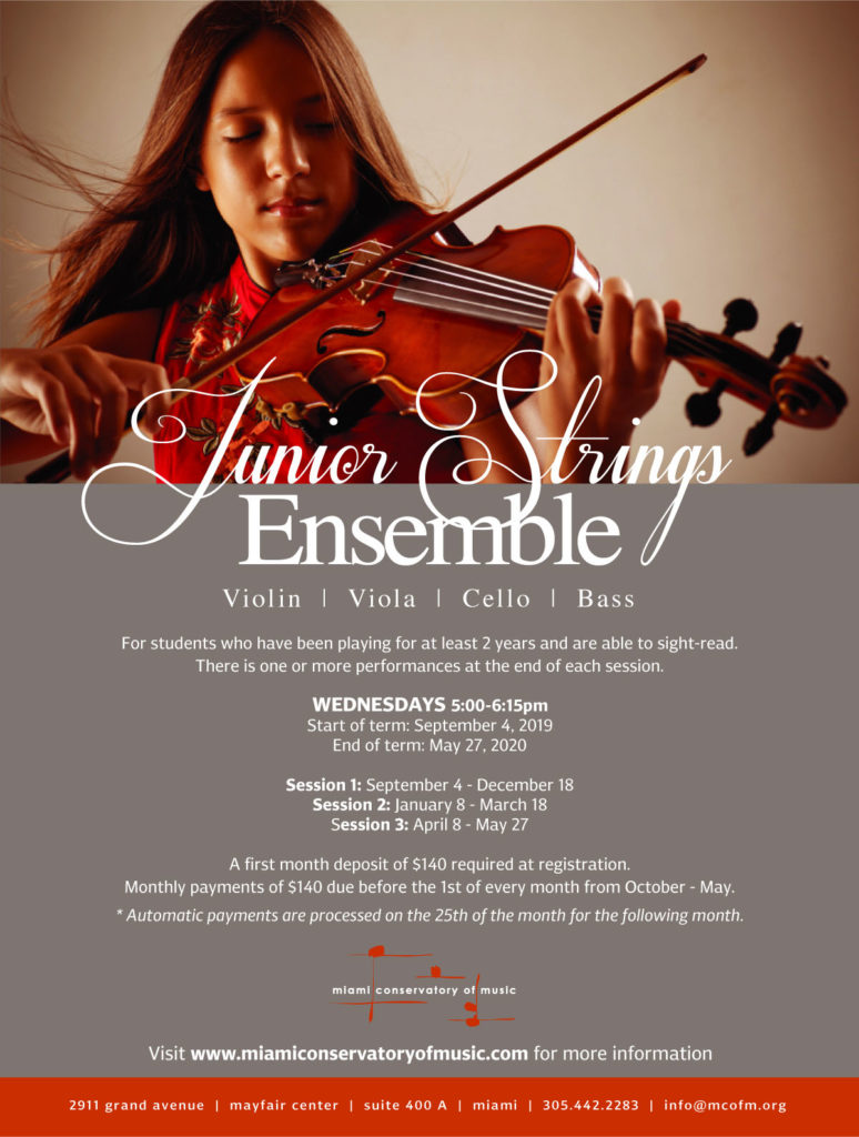 Jr. Strings Ensemble Class